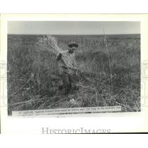 1991 Press Photo Islenos people - Spanish trapper with reeds he places near trap