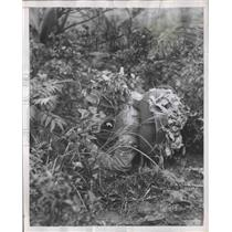 1955 Press Photo Chinese Nationalist Soldier in camouflage during maneuver