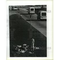 1986 Press Photo Passengers from Washington wait outside at Houston airport