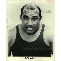 1973 Press Photo Goliath - hcs04428