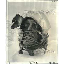 1975 Press Photo William Ludwig, Bronze Sculpture, Fine Arts Department Gallery