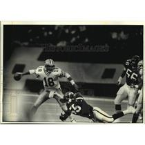 1991 Press Photo Green Bay Packers football's Mike Tomczak completes pass