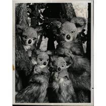 1972 Press Photo Ritts Puppets Program Watch Child Show - RRX65255