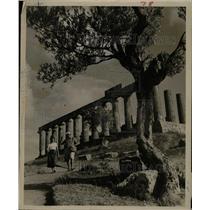 1963 Press Photo An almond tree frames Sicilian ruins - RRX69937