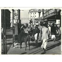 1942 Press Photo Bull roams unmolested in Calcutta - RRX83693