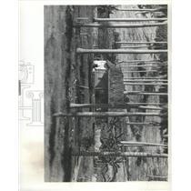 1977 Press Photo Cuba farmhand thatched-roof home - RRX91347