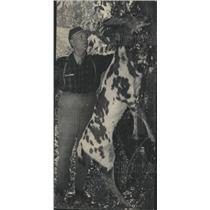 1947 Press Photo Harry Beeman Pinto Deer Hunt Gunnison - RRX88697