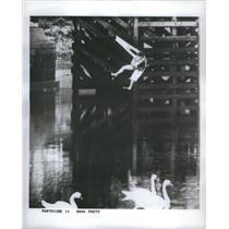 1963 Press Photo Donald Partridge Astronaut - RSC97841