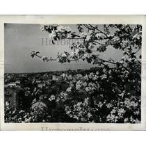 1941 Press Photo General view of Kaunas Lithuania