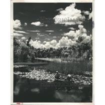 1957 Press Photo Fishing Water Fish - RRX88539