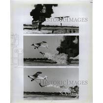 1981 Press Photo Aviation Stutmen - RRX73439