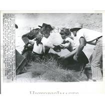 1965 Press Photo Stephanie Epper Patty Elder Stuntmen