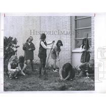 1969 Press Photo Girl scout brownies participate in service project