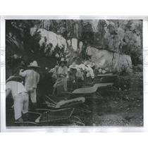 1900's Press Photo Pan Amrican Highway