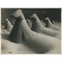 1942 Press Photo Toll Corn Shocks Blizzard Raccon 1940 - RRR93467