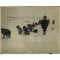 1922 Press Photo Mail Carrier by Dog SLed - nea49816