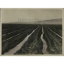 1923 Press Photo Water Irrigation at Washington.