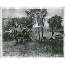 1947 Press Photo A horse Mechanized Vehicles - RRS17227