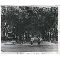 1970 Press Photo Cyclists Ride Tree Lined Green Field - RRS22745