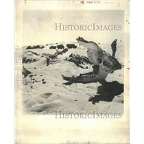 1960 Press Photo French Expedition in Sahara Desert - RRS37993