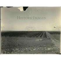1928 Press Photo Constructing water irrigation.
