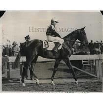 1931 Press Photo Kentucky Derby contestant Deemster - nes03067
