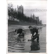 1956 Press Photo Englishmen Pan For Exotic Worms in the Thames Near Parliament