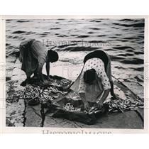 "1947 Press Photo ""Fish-Wives"" of Lisbon Sort, Wash and Pack Fish Before Market"