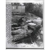 1956 Press Photo Navy Jet pilot Lt Donald Good killed when his plane crashed