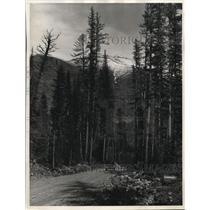 1930 Photo View Roosevelt Highway Near Singleshot Mt Glacier Natl Park