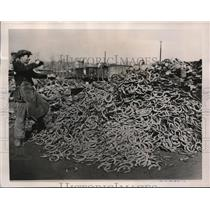 1940 Vintage Photo Heap Horseshoes to Be Scrapped by French Factory