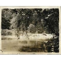 1927 Press Photo Sunlight & shadow on waters of Rock Creek in Washington