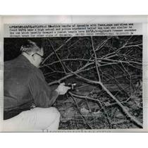 1958 Press Photo Robert Freeman Searches For Dynamite Found Near Atlanta School