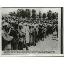 1956 Press Photo Algiers 4,000 Kabyles gather at Acmar village - nee00933