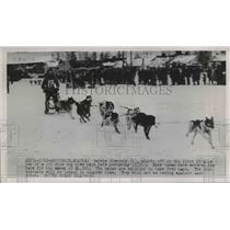 1952 Press Photo George Smmonds 2 mile lap of 100 mile dog sled race, Alaska