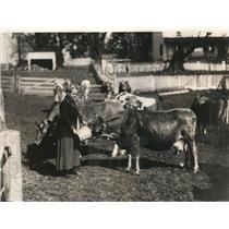 1923 Press Photo Martha Thomas Chester Co Penn feeding her cows
