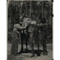 1924 Vintage Press Photo Dan Moran loading equipment on a horse