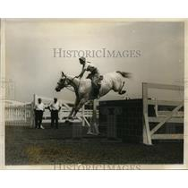 1928 Press Photo Bobbie Acker on Easy Money in Bowman Park Rye NY show