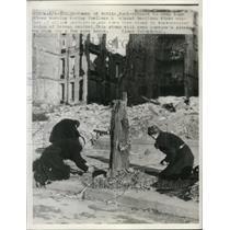 1946 Press Photo Berlin Women Saw Tree Stump for Firewood in Allied Occupation