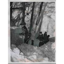 1950 Press Photo Boy scout Troops at the snow.  - nee80549