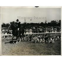 1931 Press Photo Annual Huntingdon Horse Show hunt at Long Island NY - nes39139
