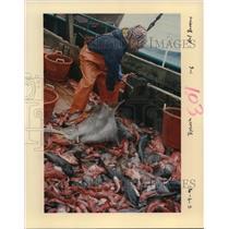 1998 Press Photo Fishing in Oregon - orb14033