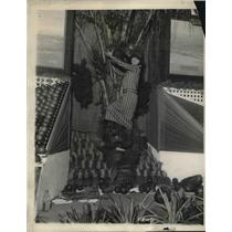 1924 Press Photo Mrs.J.A. Dew reaching for coco-nuts at the Florida Show in N.Y