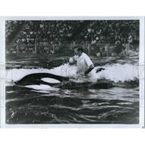 Press Photo Trainer Larry Clifford riding the whale known as Shamu - cva22315