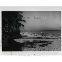 1977 Press Photo Varaden Beach, Cuba - cva23093