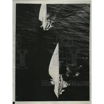 """1934 Press Photo T.O.M Sodwith's """"Endeavor"""" trails the Vanities in America's Cup"""
