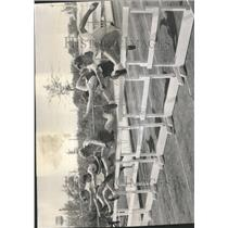1950 Press Photo Hurdle