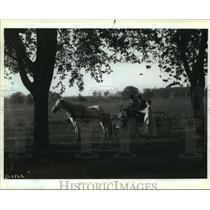 1920 Press Photo A 1920 rural scene in Wisconsin by Melvin E. Diemer.