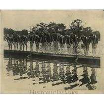 1925 Press Photo Swimmers ready at the start of a race - net29319