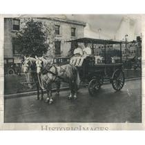 1955 Press Photo REA Chicago Express Horse